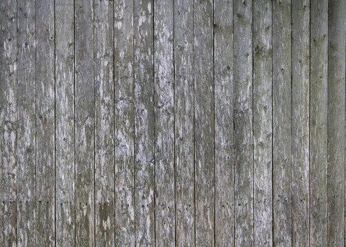 Old weathered fence background