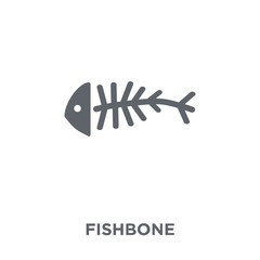 Fishbone icon from  collection.