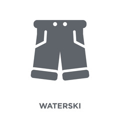waterski icon from Summer collection.