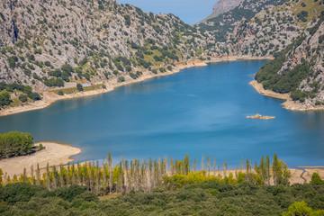 Mallorca, Urlaub, Kakteen, Natur, Wandern