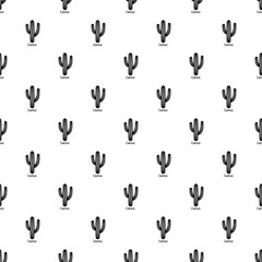 Cactus pattern vector seamless repeating for any web design