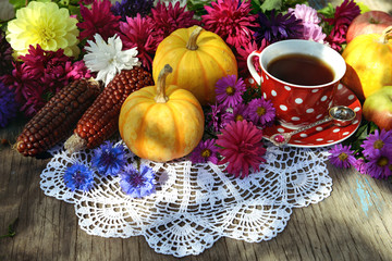 Still life with cup of tea, pumpkins, red corns and last autumn flowers on lace napkin. Autumn seasonal background, thanksgiving day concept