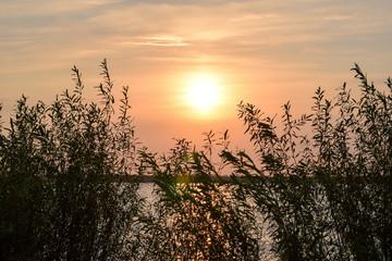 Sunrise. Sunrise on the river.  Morning on the river