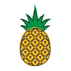 Pineapple icon. Tropical fruit