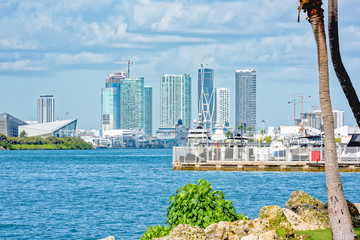 Cruise ships in Port Miami