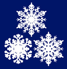 three white snowflakes isolated on blue
