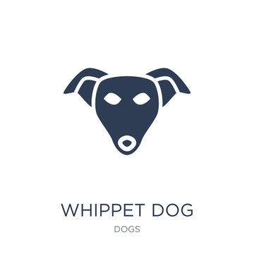 Whippet dog icon. Trendy flat vector Whippet dog icon on white background from dogs collection