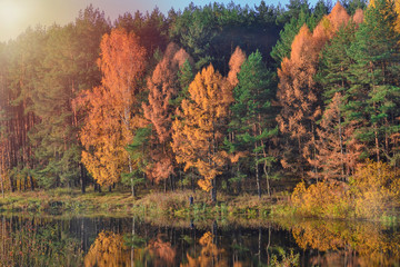 Autumn landscape with colorful forest. Colorful foliage over the lake with beautiful forests in red and yellow colors. Autumn forest is reflected in the water.