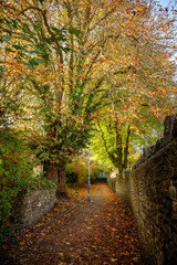 Pathway in Frome, in autumn, covered in falllen leaves