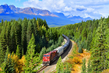 Train passing famous Morant's curve at Bow Valley in autumn ,Banff National Park, Canadian Rockies,Canada. Wall mural