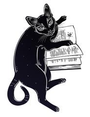 Smart black cat reading the magic book.