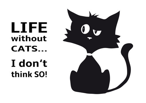Cynical cat with quote Life without cats I dont think so, funny animal, isolated on white background, black and white