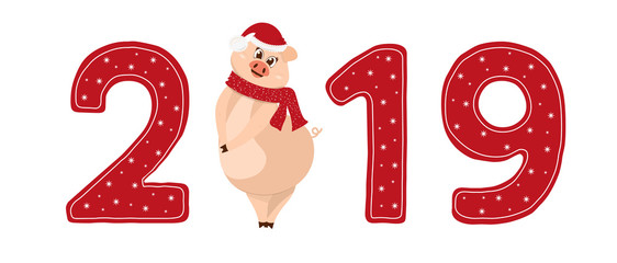 New year sign 2019 with shy pig in a hat and scarf . Used as logo, emblem for  posters, banners, greeting or calendar. Symbol of the Chinese new year