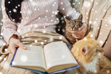 hygge, winter and people concept - close up of red and tabby cat and female owner reading book in bed at home over snow