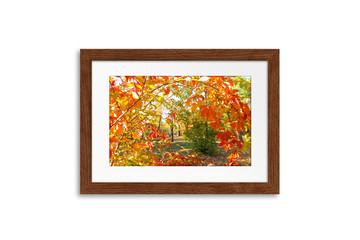 Frame with colorful autumn foliage picture, interior decor mock up