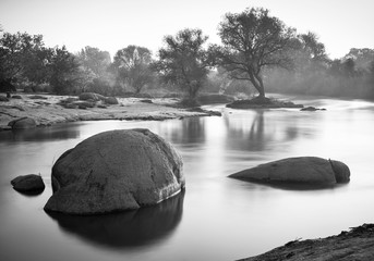monochrome photo with trees and rocks in blurred water in the morning