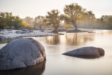trees on the river coast and two rocks in smooth river in the morning