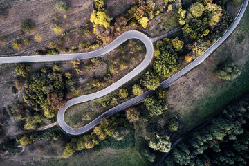 street between autumn forest aerial drone view from above, dji