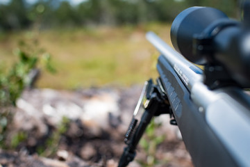 Poster Chasse Scoped hunting rifle with bipod resting on a downed tree and looking down range