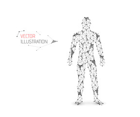 Abstract vector illustration of human body made of dots, lines and triangles. Man silhouette.