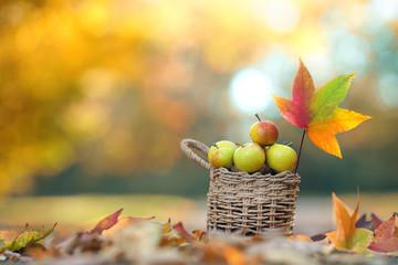 leckere Äpfel im Korb - Herbst
