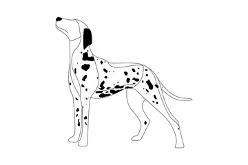 Cartoon Cute dalmatian dog waiting for the owner.