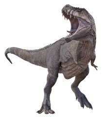 A 3D rendering of Tyrannosaurus Rex on a white background.