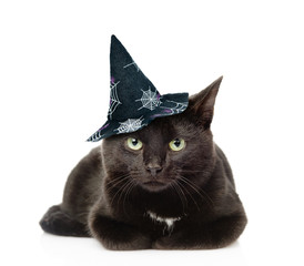 Black Cat in hat for halloween. isolated on white background