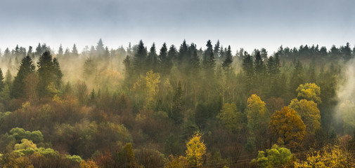 Mountain forest on the mountainside on a foggy evening. The rays of the sun pierce through the fume, the gray and heavy sky will be a storm. It is so after the rain. Fototapete