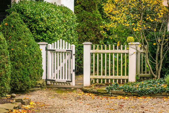 Vintage garden gate with white picket fence, inviting, open, with pebble stone walkway. Background, concept.