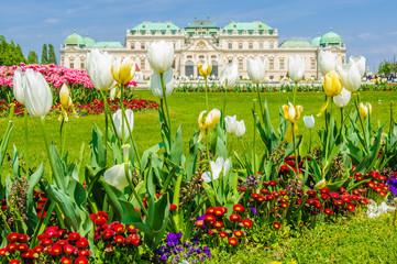 Flowers in Belvedere Palace in Vienna, Austria