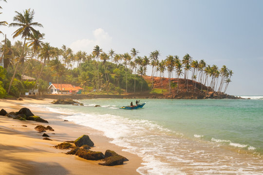 Coconut palm and sun lights through trees on beach with fishermen which is going to the water, Mirissa, Sri Lanka