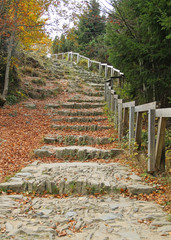 stairs on the path for tourists in the autumn nature with fallen leaves, Beskydy mountains, Czech Republic