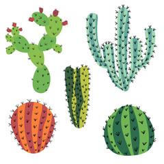 Set of doodle cactus isolated on white background.