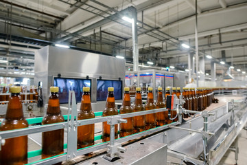 beer bottling conveyor belt in brewing factory