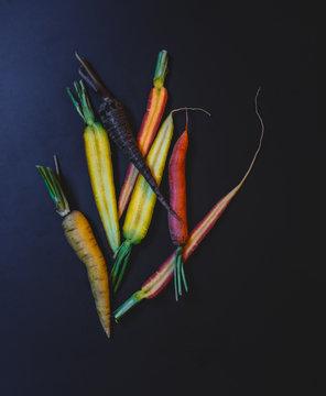 Multi Colored carrots still life