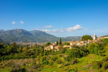 Urlaub, Mallorca, Palmen, Bananen, Wandern, Katze, Kitty, Tiere, Früchte