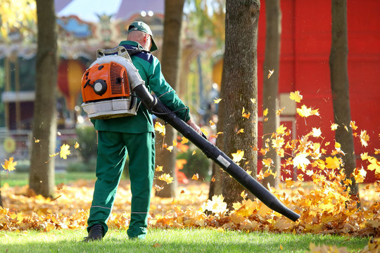 Working in the Park removes leaves with a blower