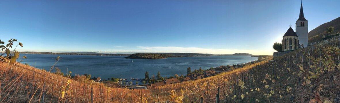 Panorama über Ligerz am Bielersee in der Schweiz
