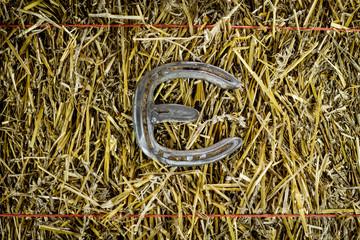 Letter E Steel Horseshoe on Straw