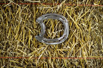 Letter D Steel Horseshoe on Straw