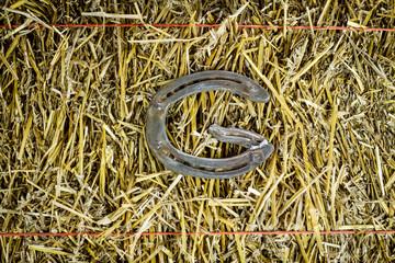 Letter G Steel Horseshoe on Straw