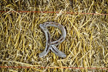 Letter R Steel Horseshoe on Straw