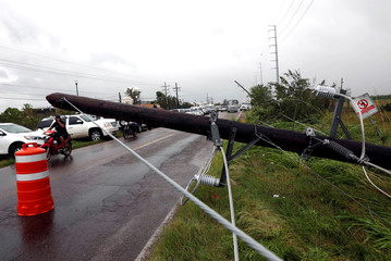 Fallen electricity pole is seen along a highway outside the town of Escuinapa near the southern tip of Sinaloa state after Hurricane Willa hit, Mexico October 24, 2018. REUTERS/Henry Romero