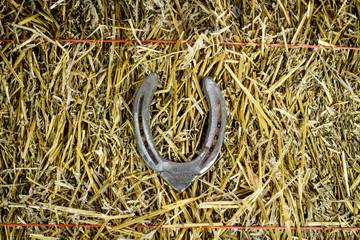 Letter V Steel Horseshoe on Straw
