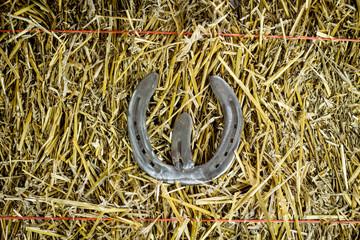Letter W Steel Horseshoe on Straw