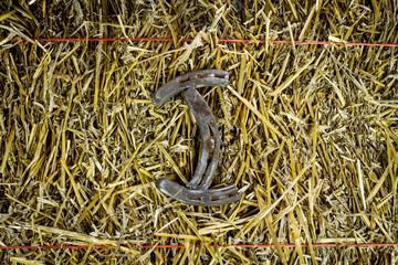 Letter I Steel Horseshoe on Straw