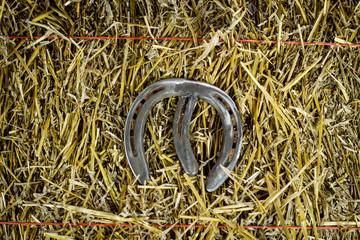 Letter M Steel Horseshoe on Straw