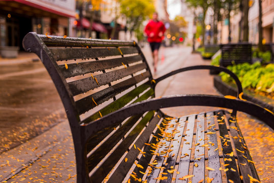 Rain covered bench on State Street in Madison, Wisconsin.