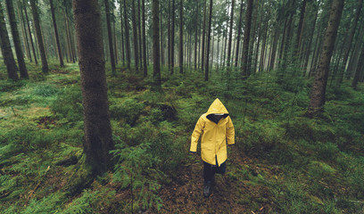 hiker with yellow rain jacket walks in the foggy forest